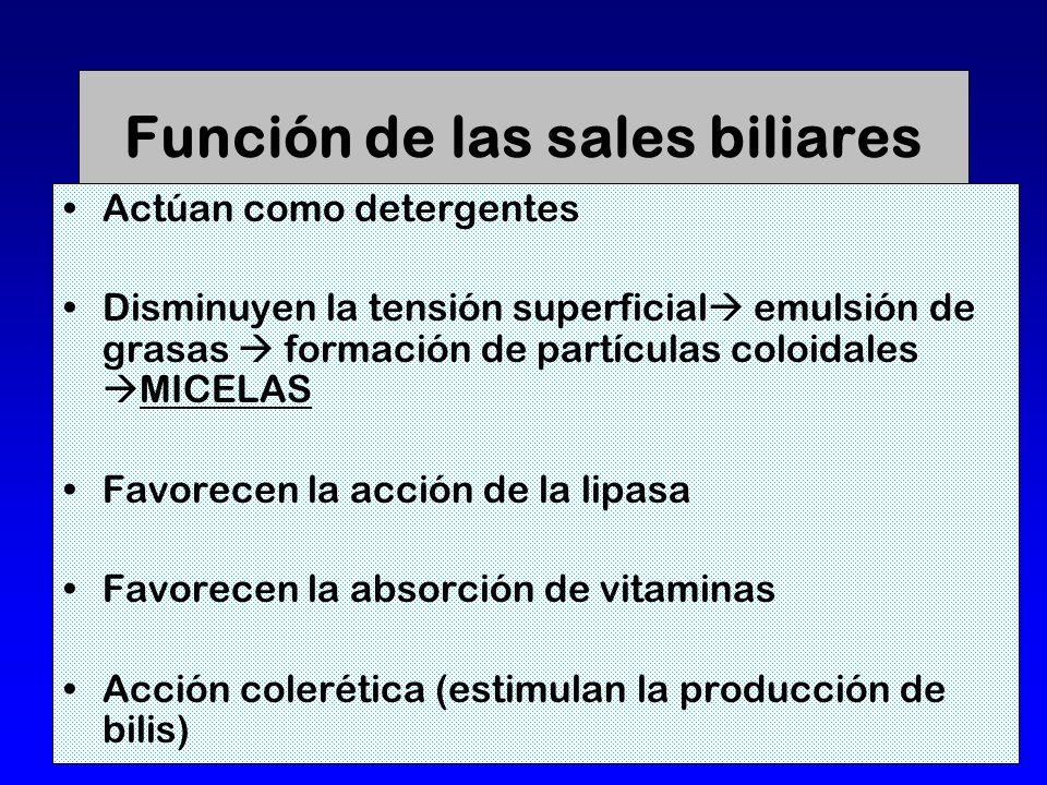 Función de las sales biliares