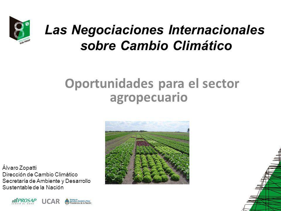 Las Negociaciones Internacionales sobre Cambio Climático