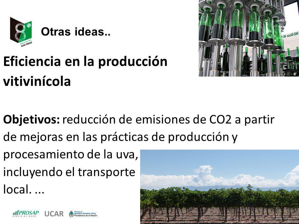 Eficiencia en la producción vitivinícola
