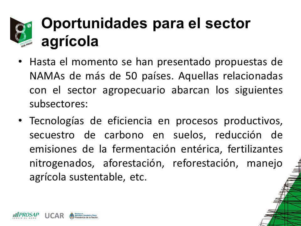 Oportunidades para el sector agrícola