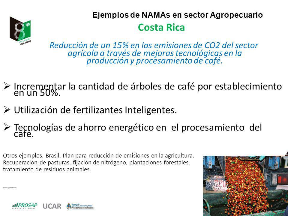 Ejemplos de NAMAs en sector Agropecuario