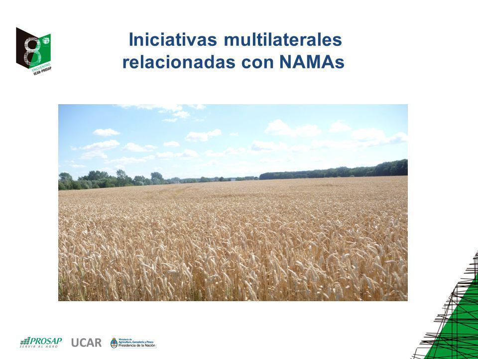 Iniciativas multilaterales relacionadas con NAMAs