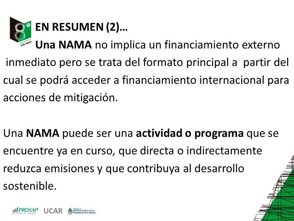 EN RESUMEN (2)… Una NAMA no implica un financiamiento externo. inmediato pero se trata del formato principal a partir del.