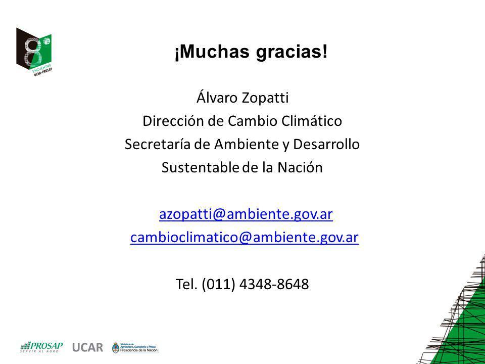 ¡Muchas gracias! Álvaro Zopatti Dirección de Cambio Climático