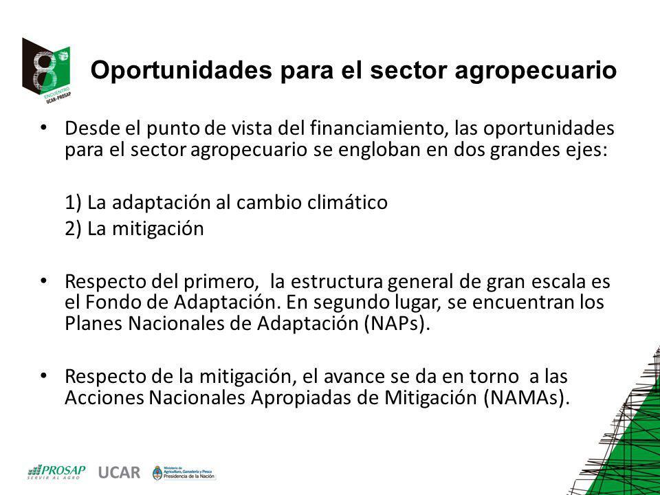 Oportunidades para el sector agropecuario
