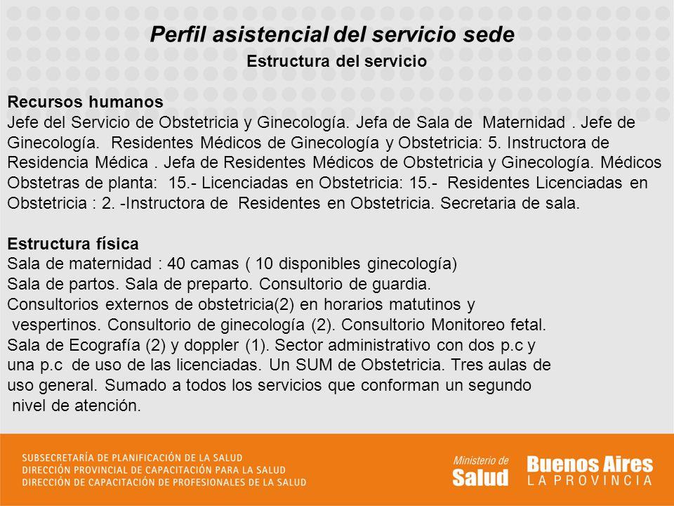 Perfil asistencial del servicio sede Estructura del servicio