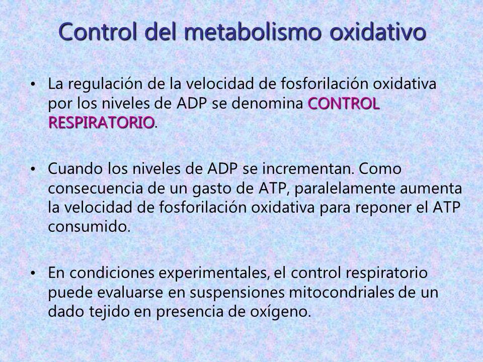 Control del metabolismo oxidativo