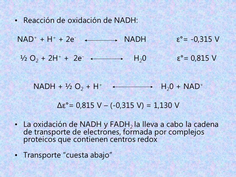 Reacción de oxidación de NADH: