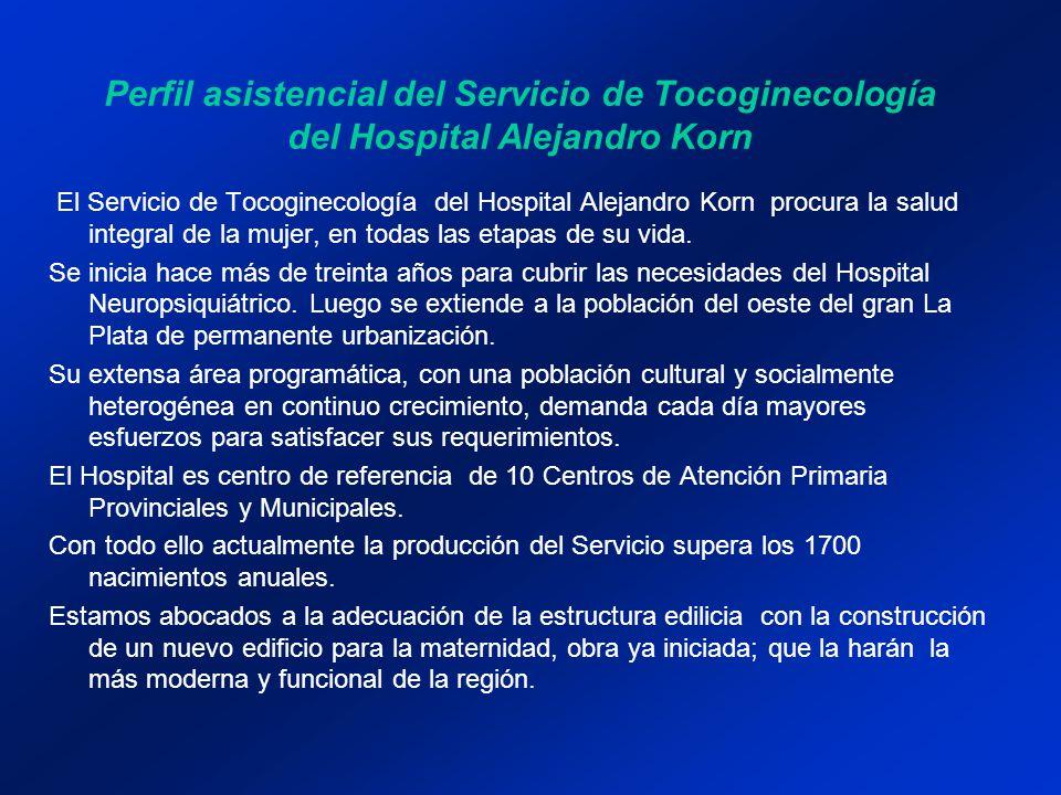 Perfil asistencial del Servicio de Tocoginecología del Hospital Alejandro Korn
