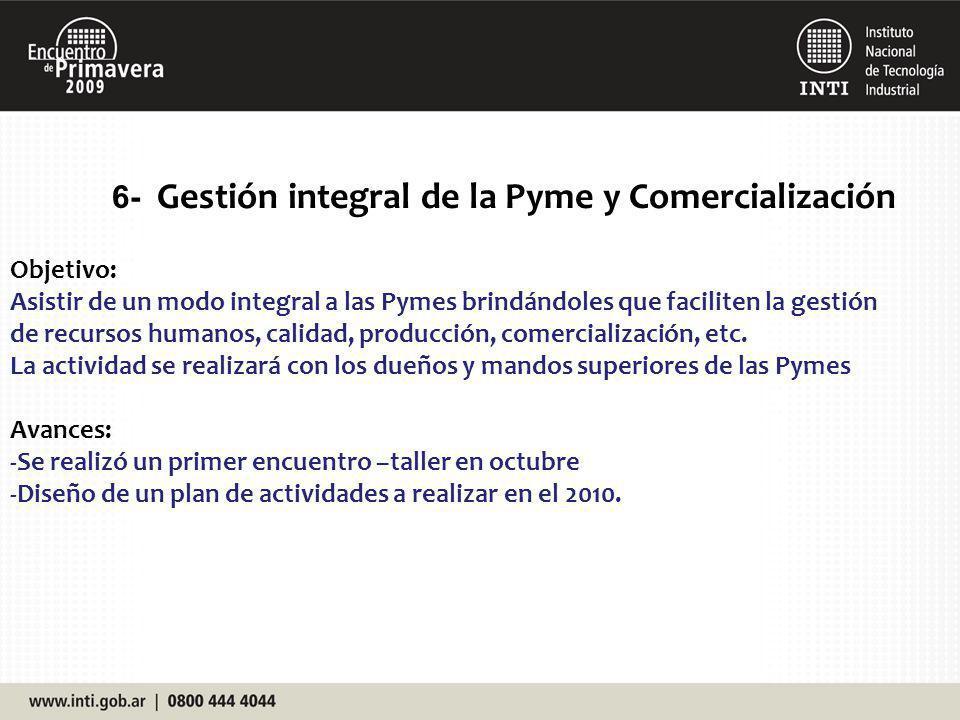 6- Gestión integral de la Pyme y Comercialización