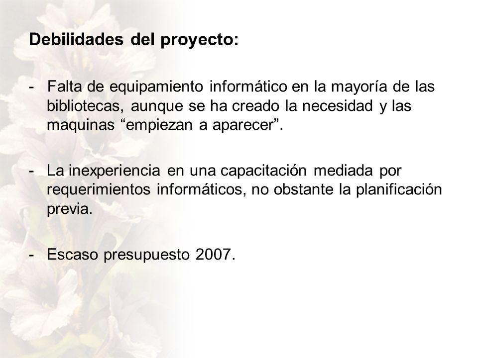 Debilidades del proyecto: