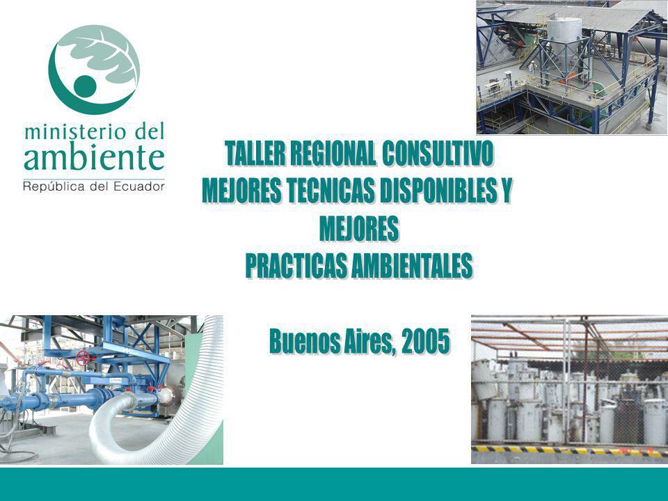 TALLER REGIONAL CONSULTIVO MEJORES TECNICAS DISPONIBLES Y MEJORES