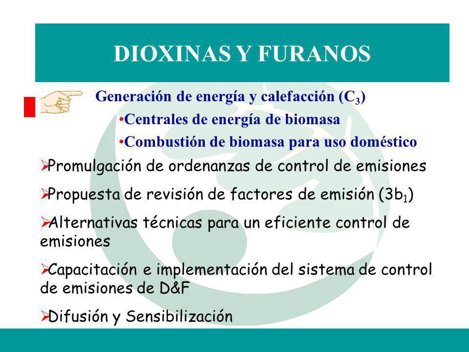 DIOXINAS Y FURANOS Generación de energía y calefacción (C3)