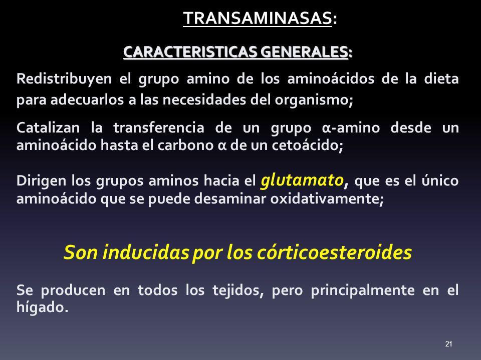 CARACTERISTICAS GENERALES: Son inducidas por los córticoesteroides