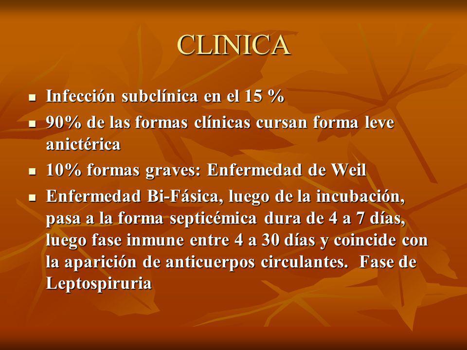 CLINICA Infección subclínica en el 15 %