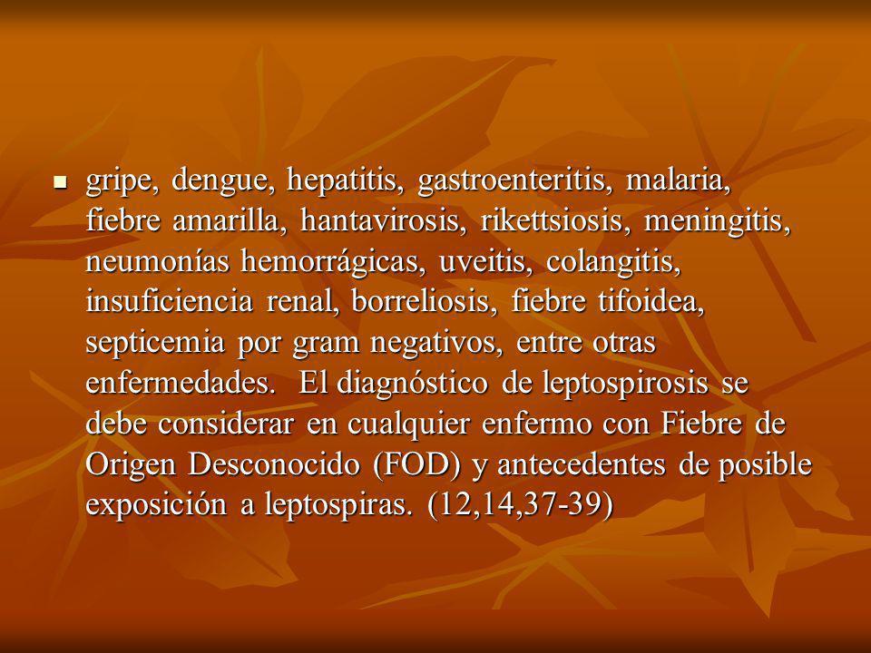 gripe, dengue, hepatitis, gastroenteritis, malaria, fiebre amarilla, hantavirosis, rikettsiosis, meningitis, neumonías hemorrágicas, uveitis, colangitis, insuficiencia renal, borreliosis, fiebre tifoidea, septicemia por gram negativos, entre otras enfermedades. El diagnóstico de leptospirosis se debe considerar en cualquier enfermo con Fiebre de Origen Desconocido (FOD) y antecedentes de posible exposición a leptospiras.