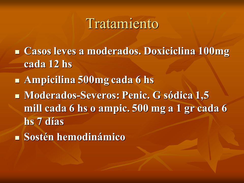 Tratamiento Casos leves a moderados. Doxiciclina 100mg cada 12 hs