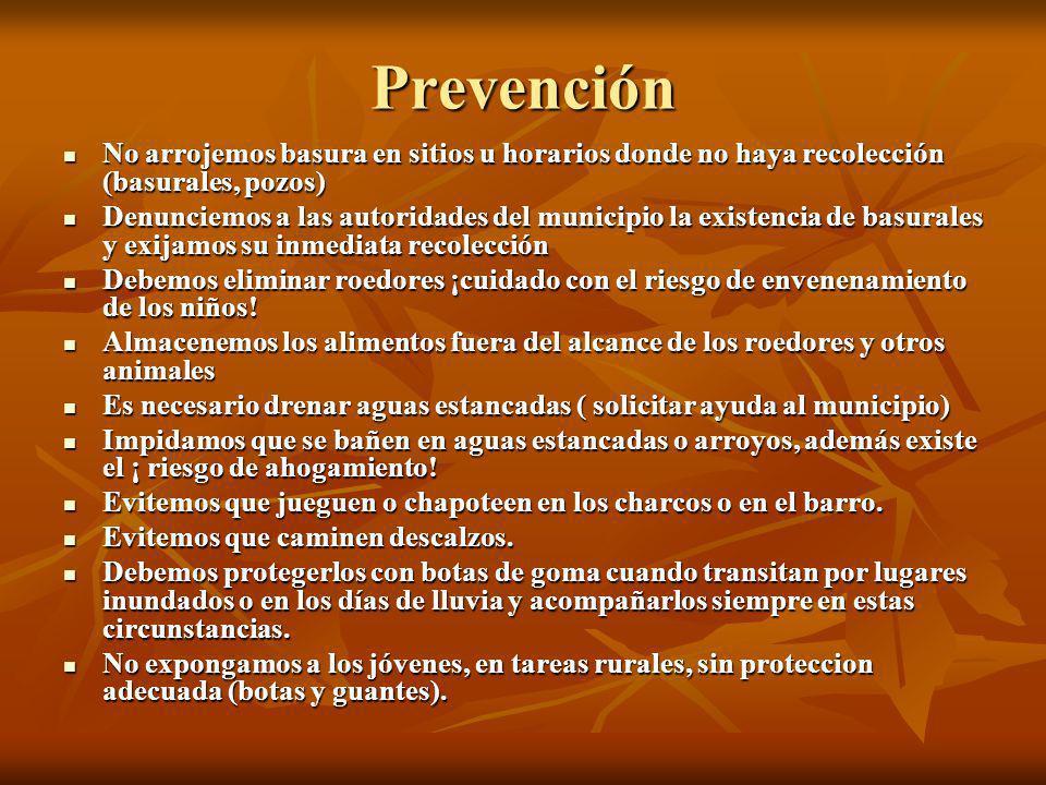 Prevención No arrojemos basura en sitios u horarios donde no haya recolección (basurales, pozos)