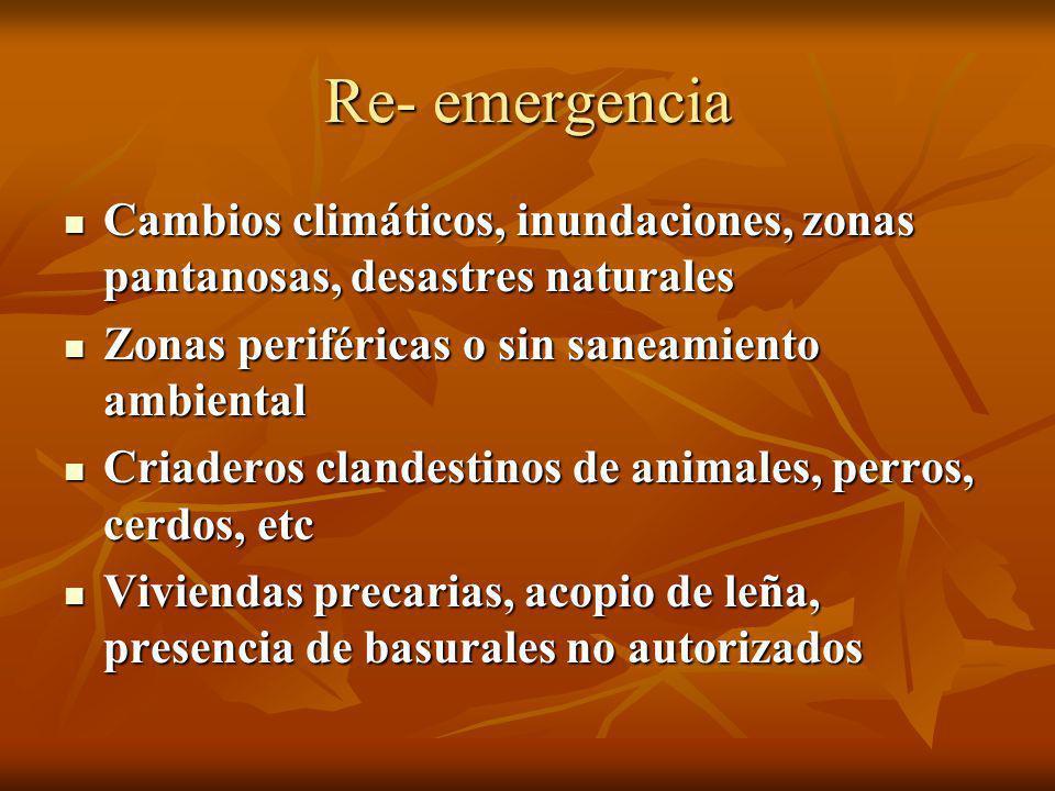 Re- emergencia Cambios climáticos, inundaciones, zonas pantanosas, desastres naturales. Zonas periféricas o sin saneamiento ambiental.