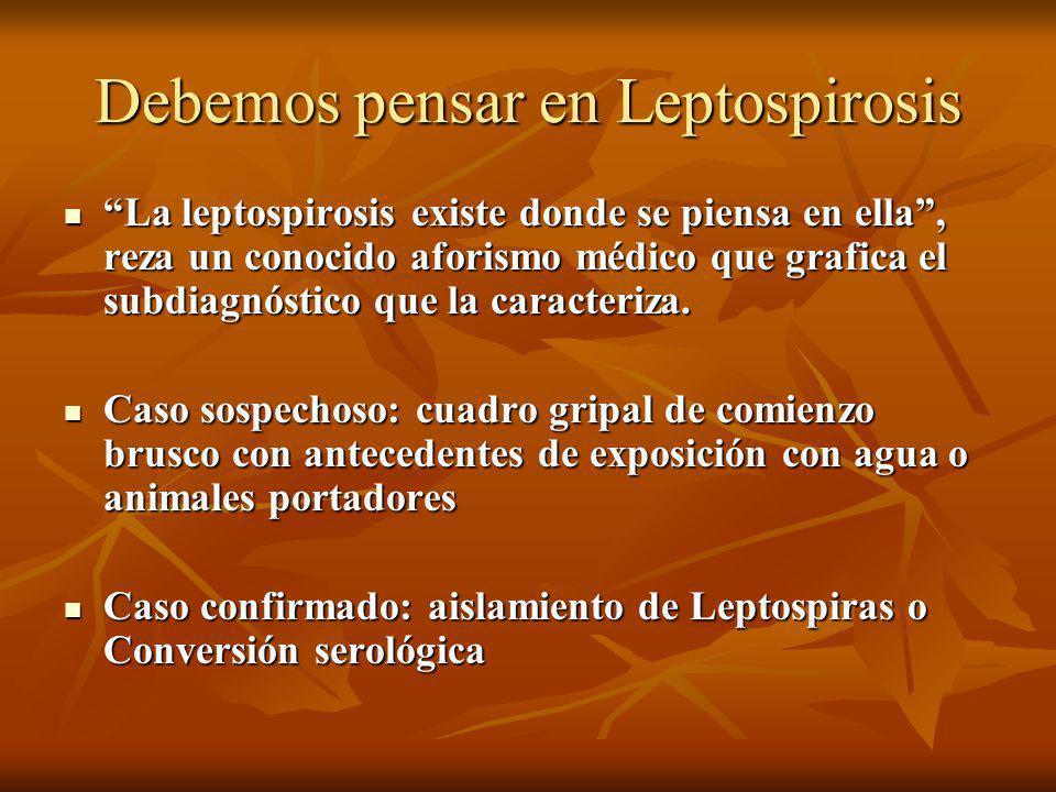 Debemos pensar en Leptospirosis
