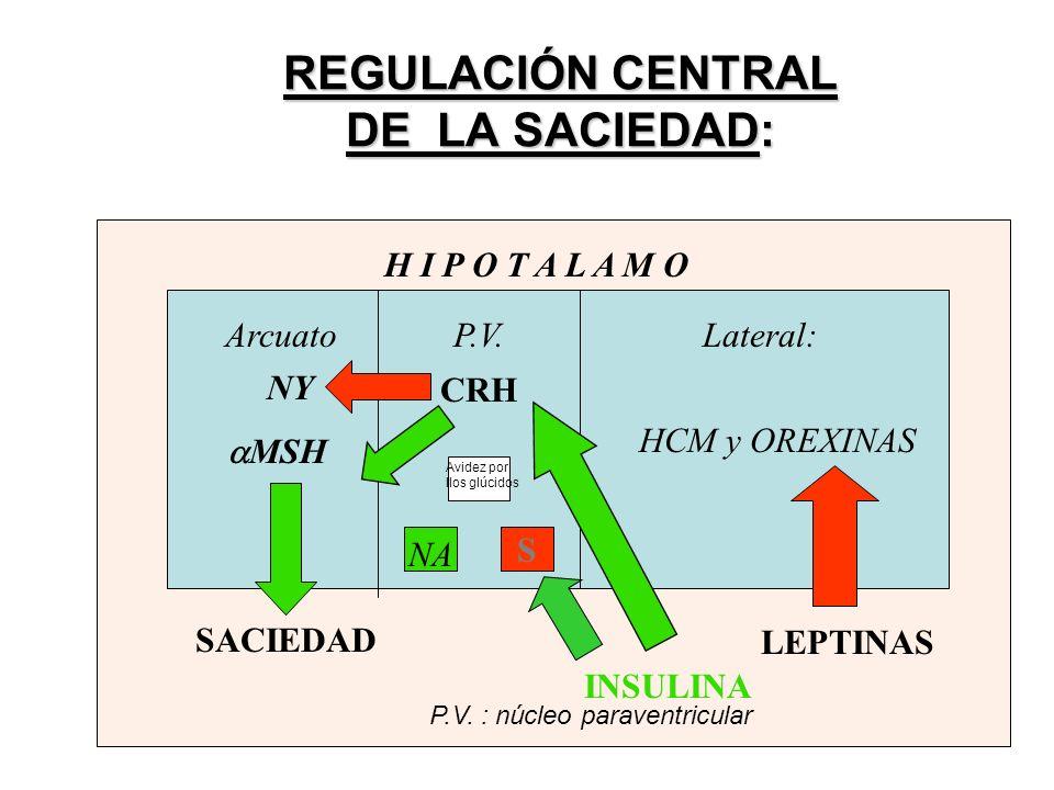 REGULACIÓN CENTRAL DE LA SACIEDAD: