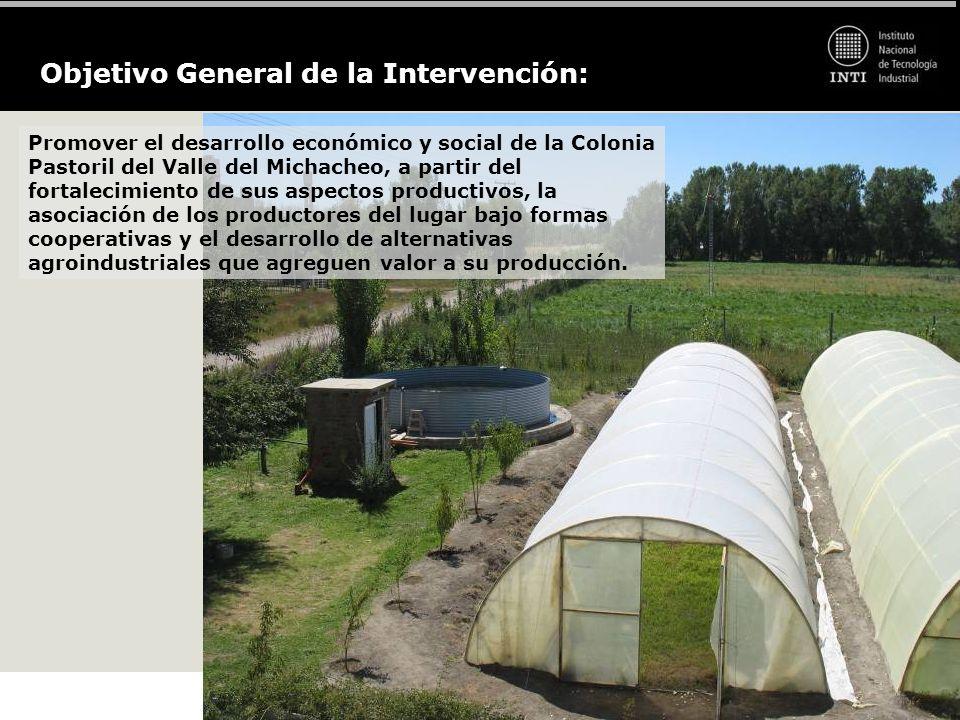 Objetivo General de la Intervención: