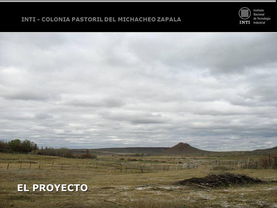INTI - COLONIA PASTORIL DEL MICHACHEO ZAPALA