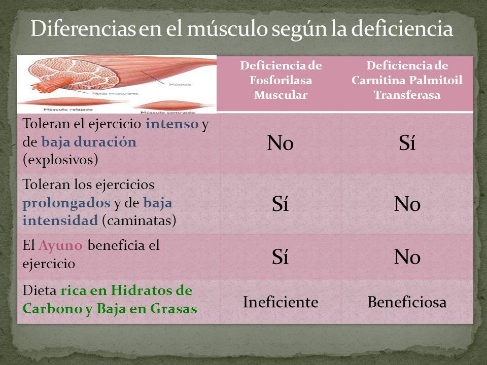 Diferencias en el músculo según la deficiencia