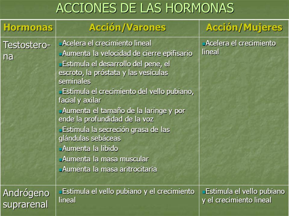 ACCIONES DE LAS HORMONAS