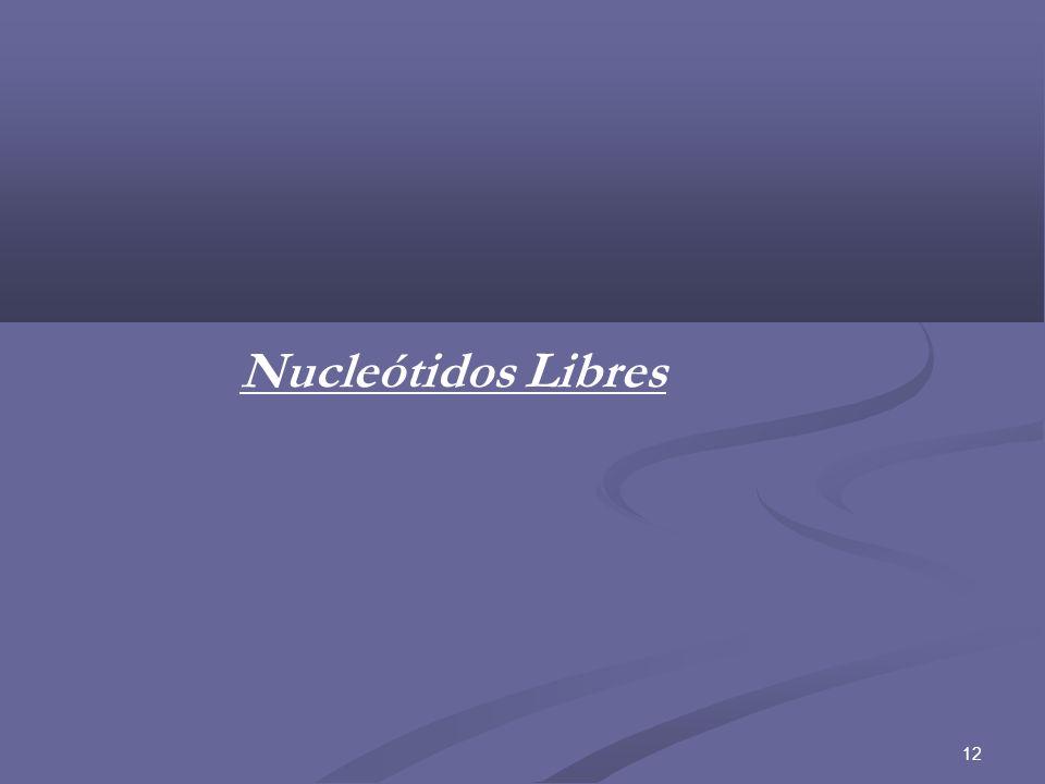Nucleótidos Libres 12