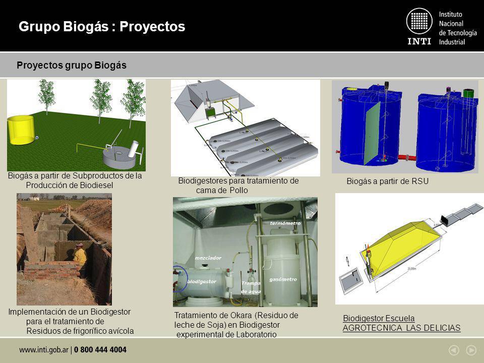 Grupo Biogás : Proyectos