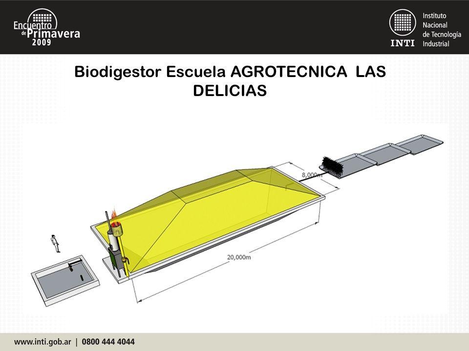 Biodigestor Escuela AGROTECNICA LAS DELICIAS