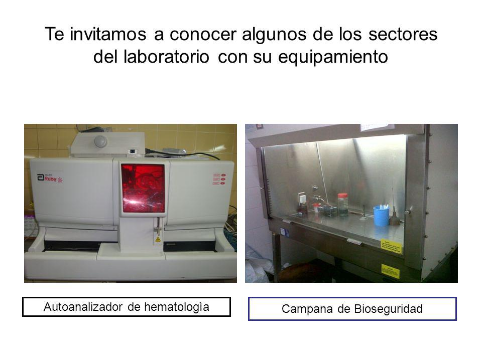 Te invitamos a conocer algunos de los sectores del laboratorio con su equipamiento