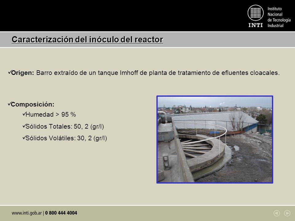 Caracterización del inóculo del reactor