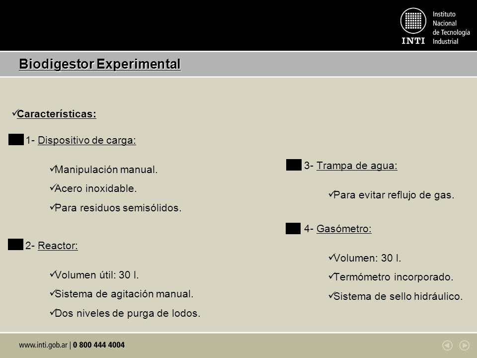 Biodigestor Experimental