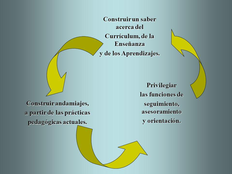 Construir un saber acerca del Currículum, de la Enseñanza