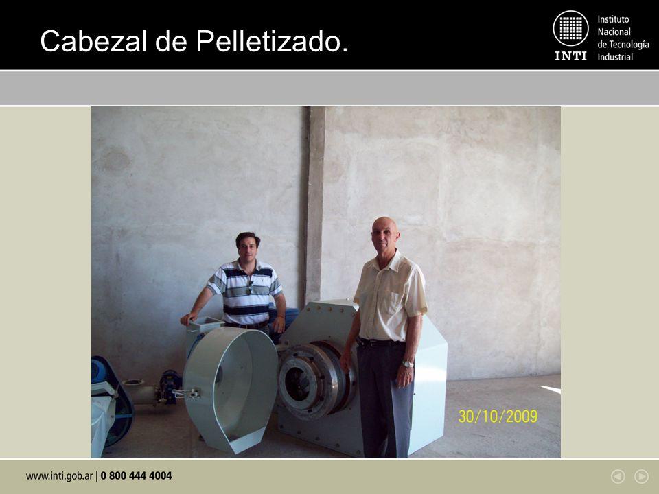Cabezal de Pelletizado.