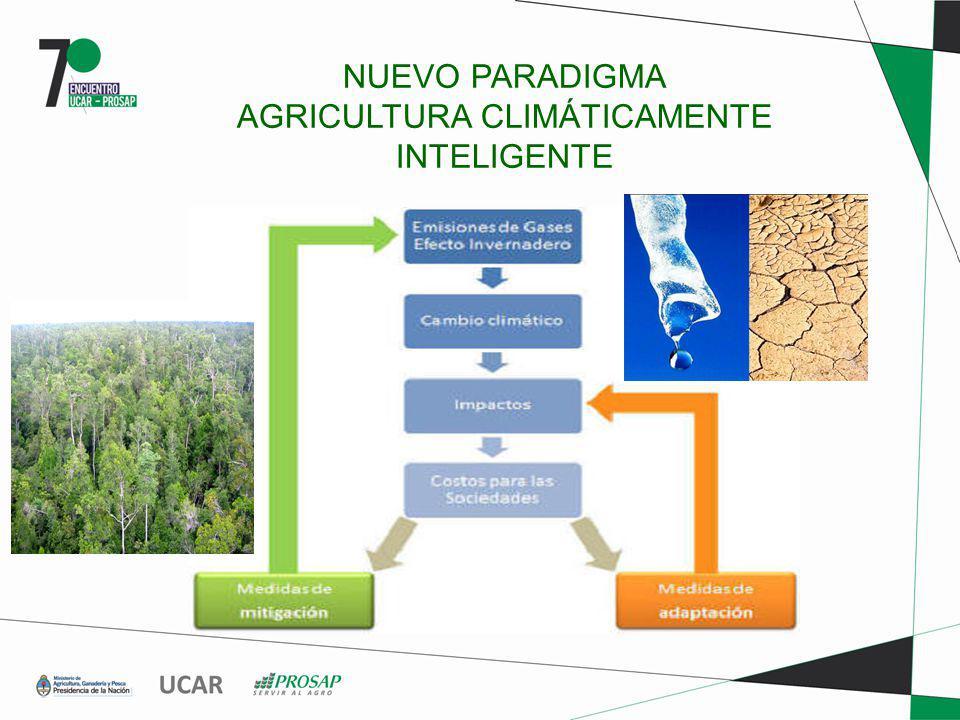 NUEVO PARADIGMA AGRICULTURA CLIMÁTICAMENTE INTELIGENTE
