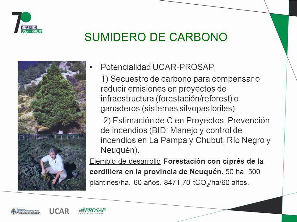 SUMIDERO DE CARBONO Potencialidad UCAR-PROSAP