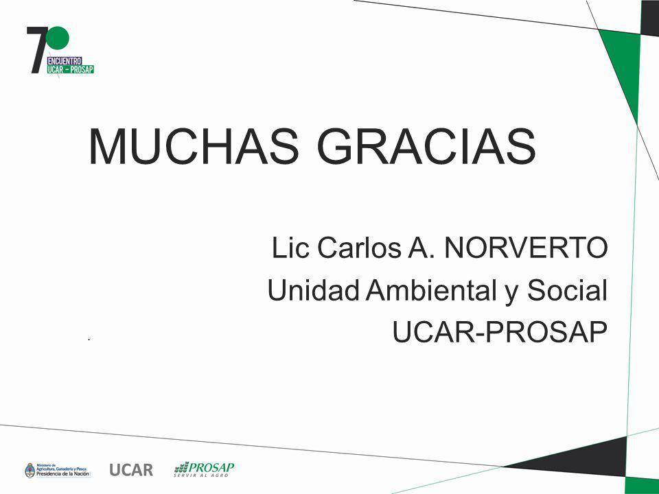 MUCHAS GRACIAS Lic Carlos A. NORVERTO Unidad Ambiental y Social