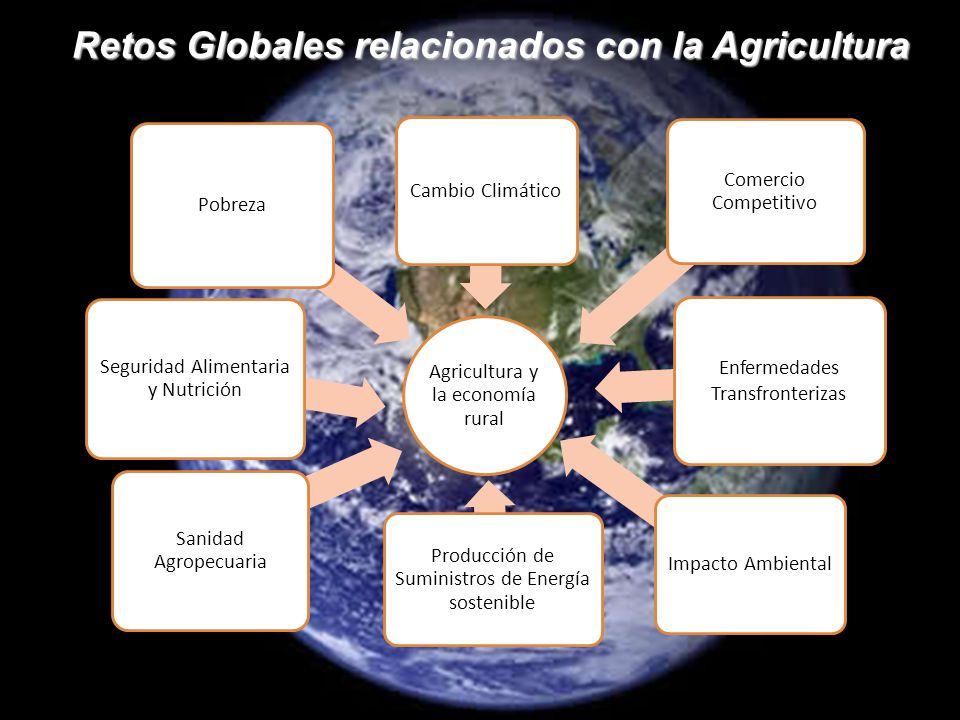 Retos Globales relacionados con la Agricultura