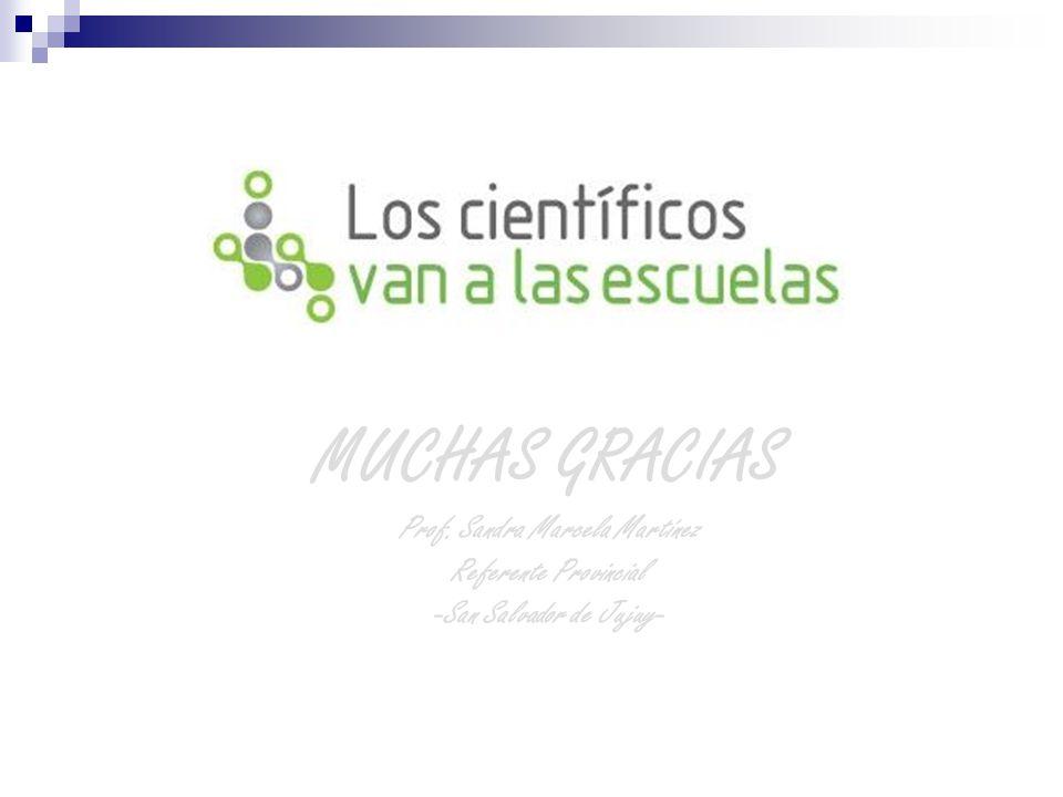 Prof. Sandra Marcela Martínez -San Salvador de Jujuy-