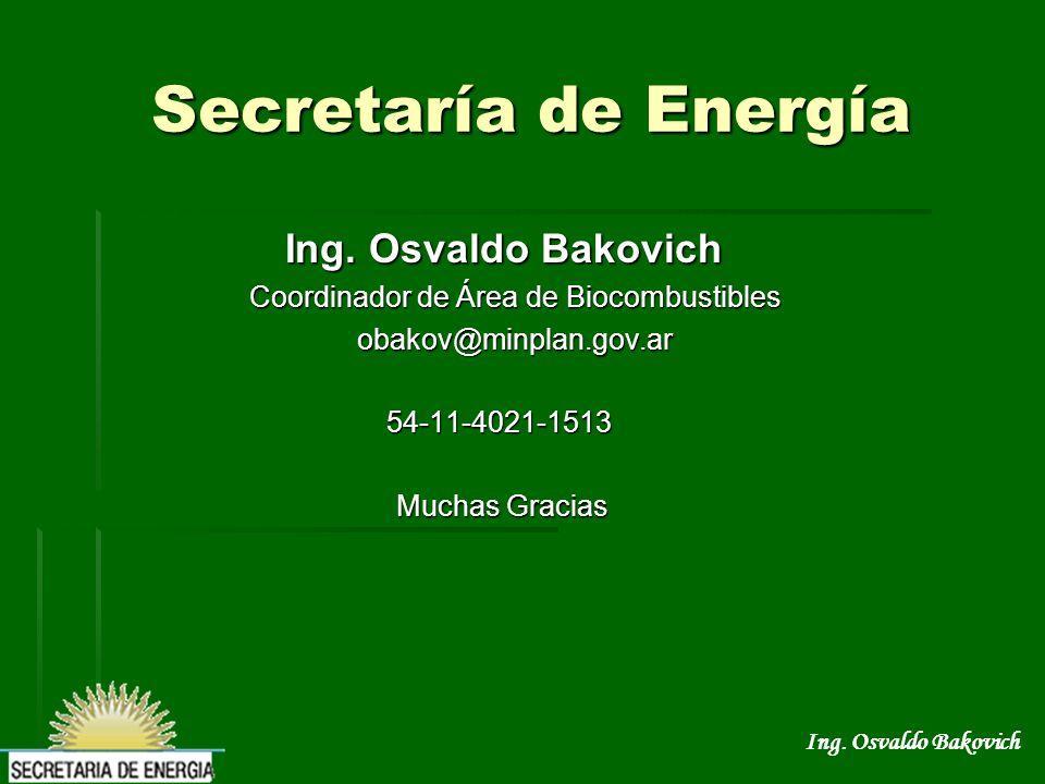Coordinador de Área de Biocombustibles