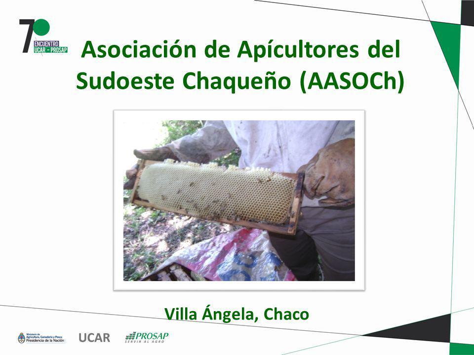 Asociación de Apícultores del Sudoeste Chaqueño (AASOCh)