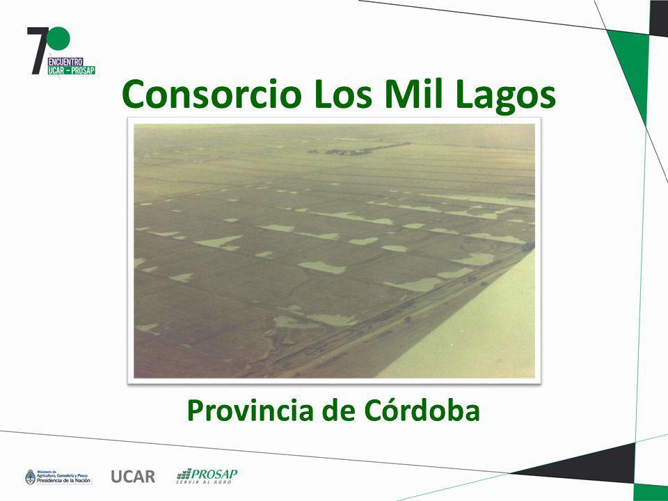 Consorcio Los Mil Lagos