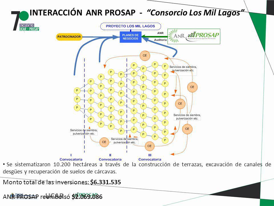 INTERACCIÓN ANR PROSAP - Consorcio Los Mil Lagos