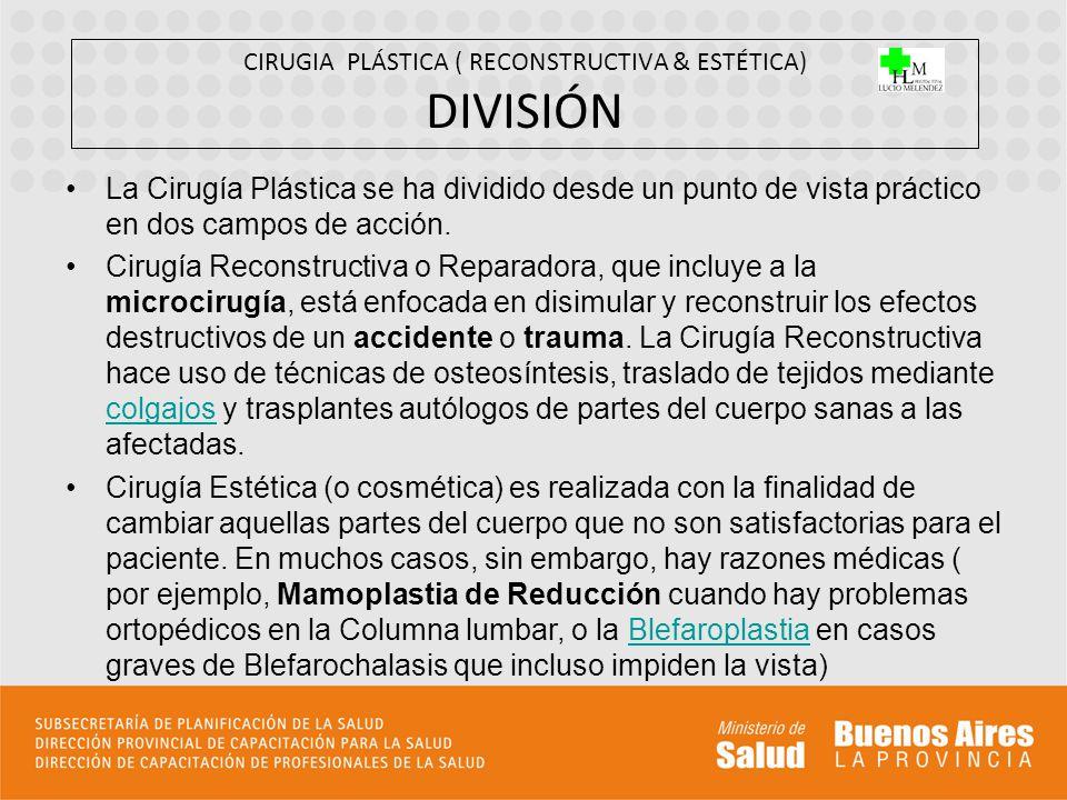 CIRUGIA PLÁSTICA ( RECONSTRUCTIVA & ESTÉTICA) DIVISIÓN
