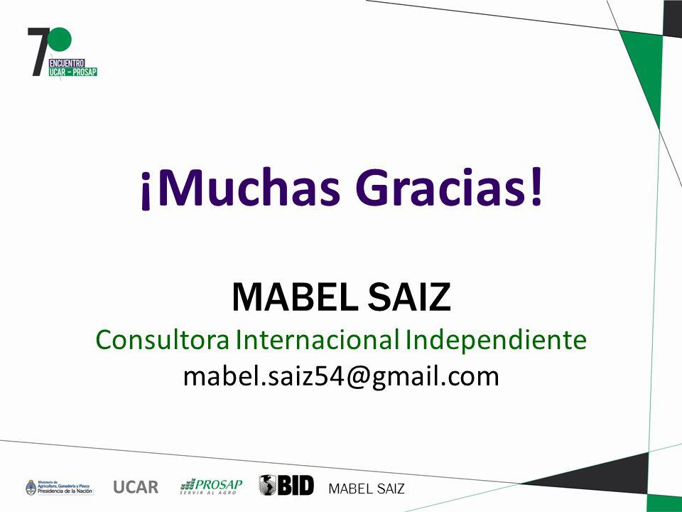 ¡Muchas Gracias! MABEL SAIZ Consultora Internacional Independiente mabel.saiz54@gmail.com