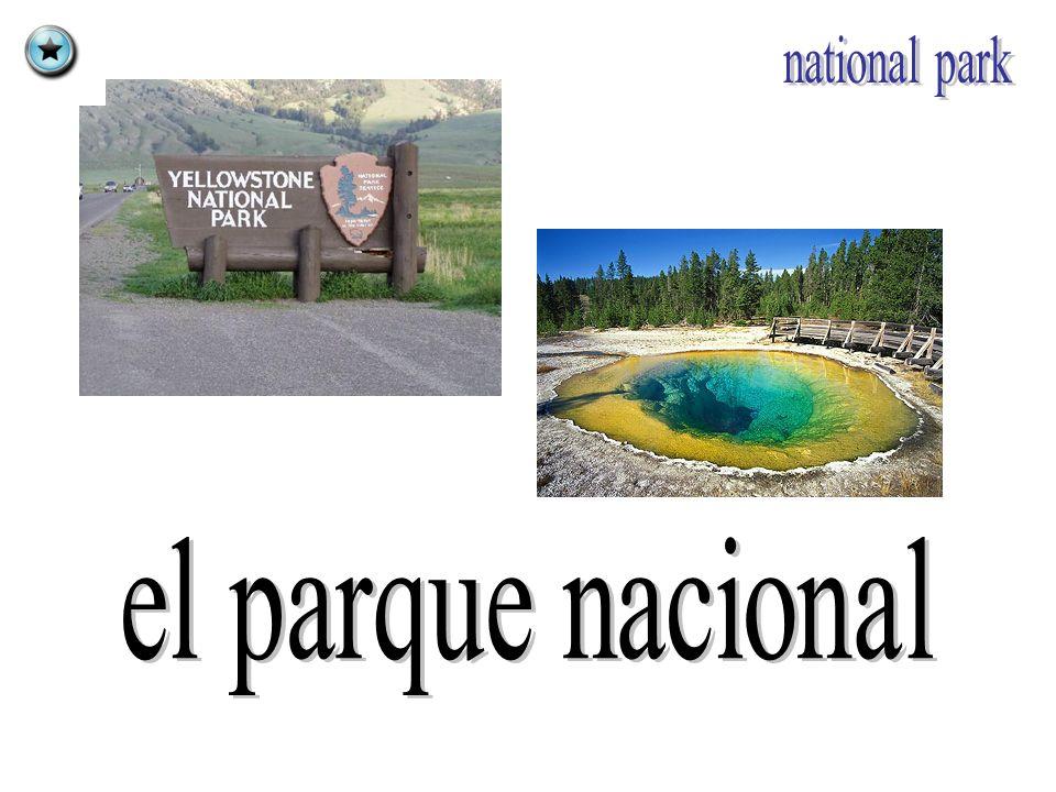national park el parque nacional