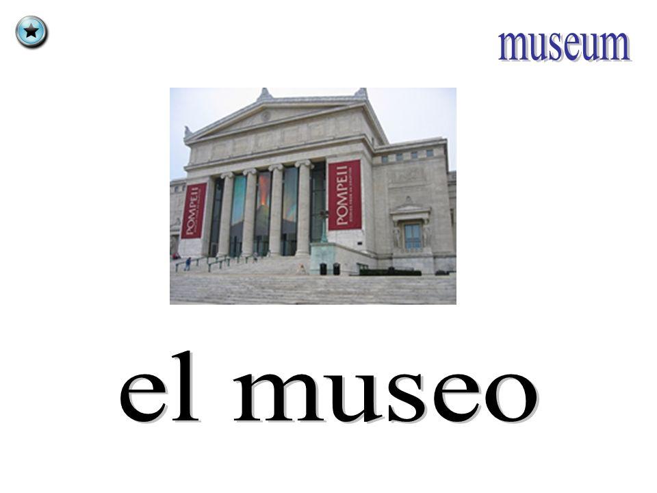 museum el museo